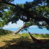 #86 和歌山にあるラピュタ島⁉に潜入、とりあえず叫ぶよねあの言葉。
