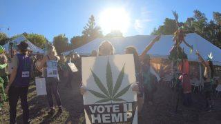 #AUS旅日記14 大麻のお祭り⁉ニンビンのマルディグラスに参加したよ